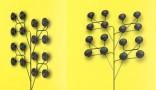 Fleurs sonores – Haut parleur mural amplifié à diffusion par répartition relié à un Ipod.