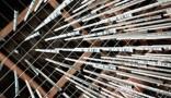Installation Walina – Nodesign, Musique Ramutcho Matta, à l'Institut Français de Bucarest, lors de la Nuit des Instituts. L'installation réagit au passage et aux mouvements d'une foule. Elle a notamment...